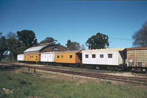 8.9.1985,Mt Barker - worker train 8133 + 8123 + ? + 8144 + 8221