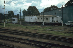 11.6.1986 8208 + 8121 camp train Naracoorte