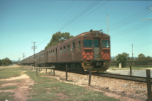 1.1.1989,Grange station nine car Red Hen 324 in lead