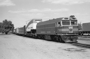 25.8.1976 - Marree - NJ2 on mixed train